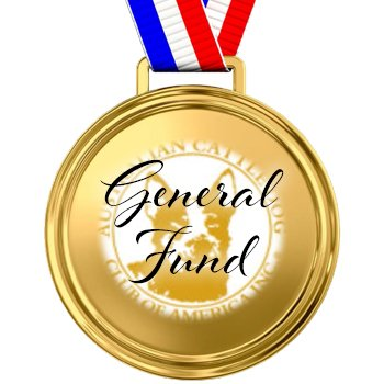 General Fund Sponsorship for store
