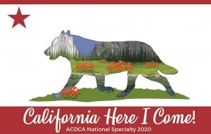 2020 National Logo for home