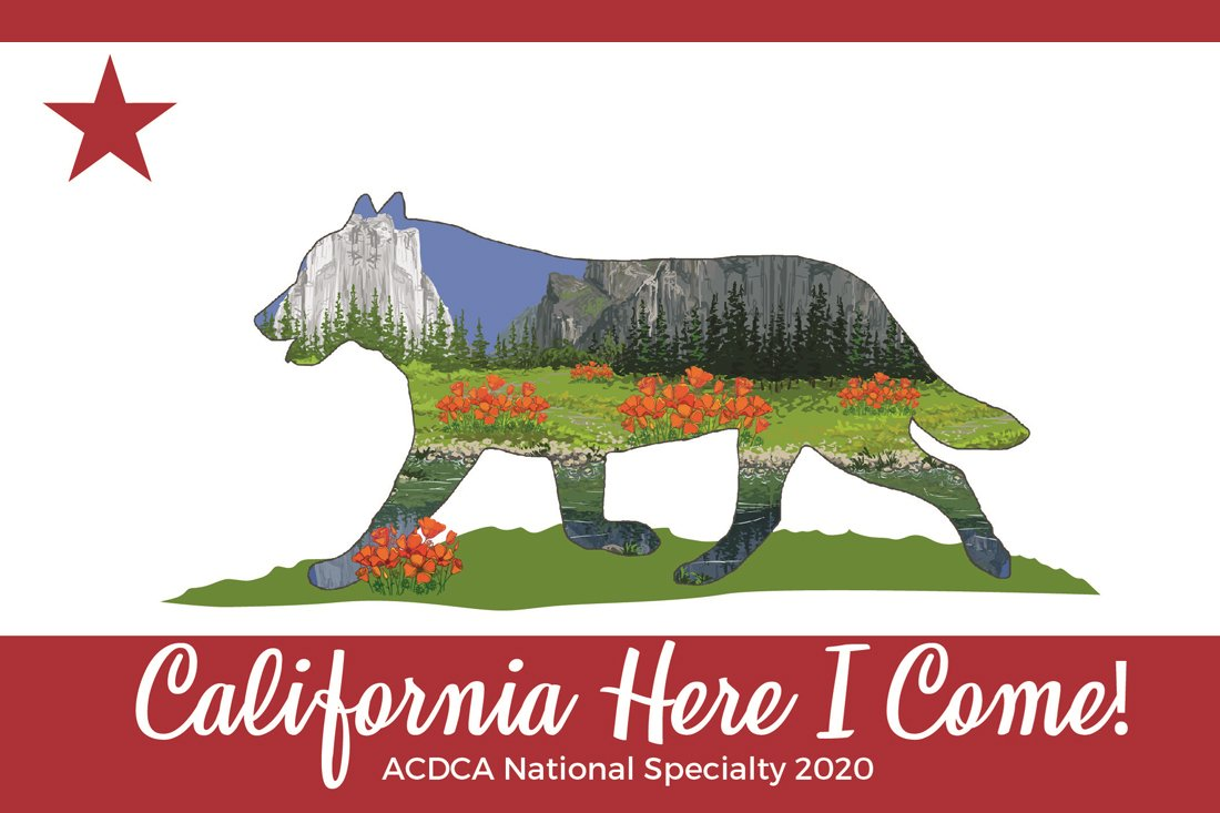 2020 National Logo