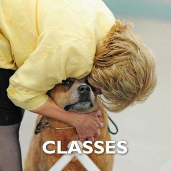 Handling Class